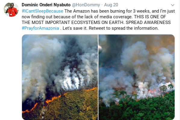 The viral Twitter post that began the movement to raise awareness of the Amazonian fires.