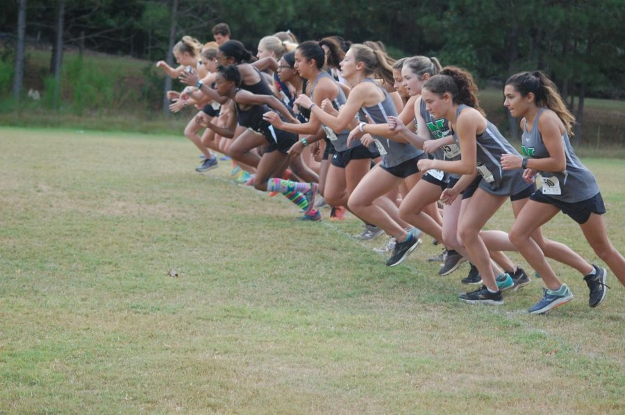 McIntosh+XC+varsity+girl+runners+take+off+from+the+starting+line+at+the+Fayette+County+Championship+meet.
