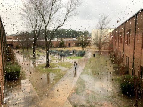 A picture of the courtyard, taken from the upstairs senior hallway, on March 2, 2020, 10 days before the lockdown.