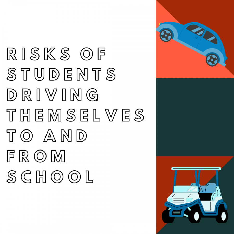 Graphic designed by Savannah Hayes, on the risks of students driving themselves to/from school.